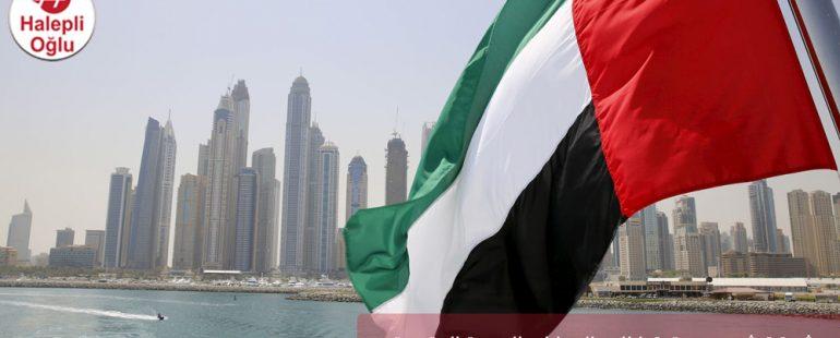 شركة شحن من تركيا إلى الإمارات العربية المتحدة